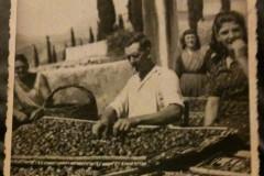 Slikano 1947.